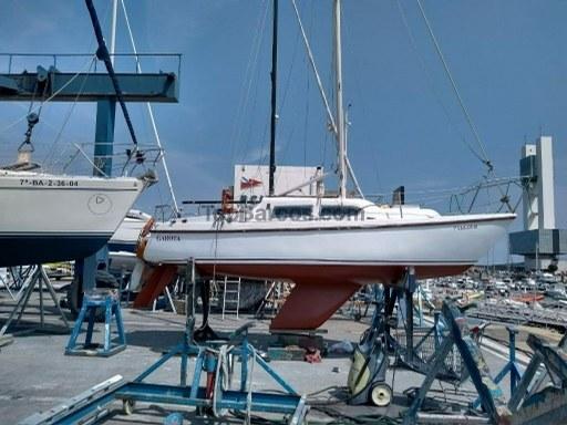 Puma Yachts 23